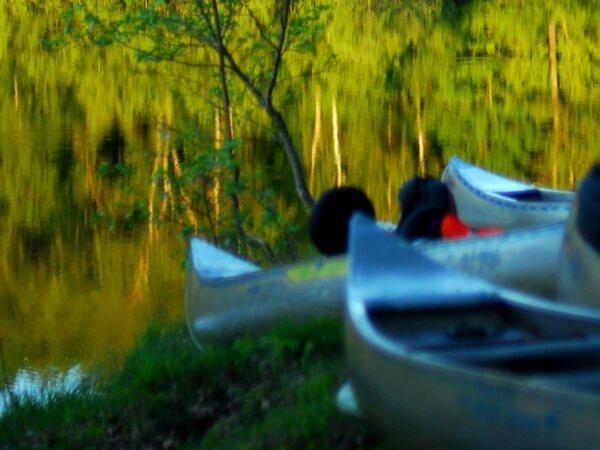location de canoé sur la leyre à mios entre bordeaux et arcachon